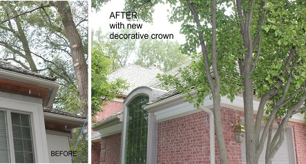 before-after-gutters-and-eaves-DuPree-Construction-Joliet-IL